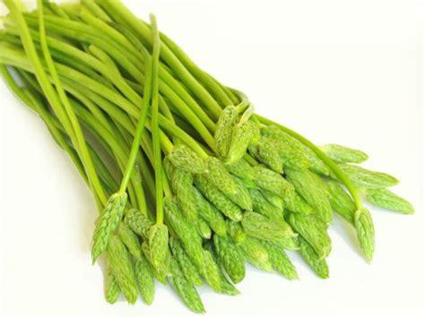 comment cuisiner les asperges sauvages comment acheter et pr 233 parer les asperges article
