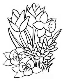 floral coloring pages 7 flowers coloring pages