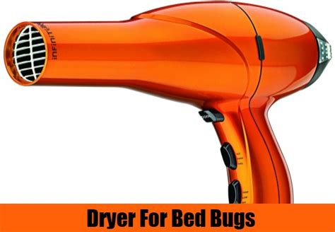does the dryer kill bed bugs spray to get rid of spider mites how to kill bed bugs in