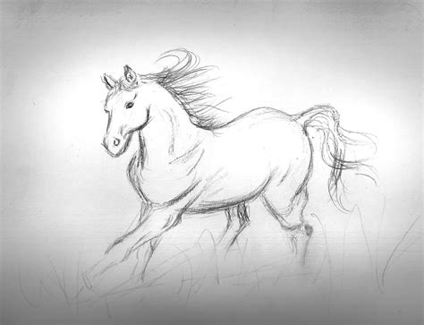 Sketches Simple by The Horses By Alain