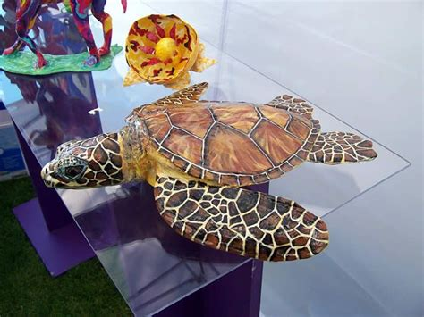 How To Make A Paper Mache Turtle - 17 best images about paper mache on sea