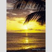 Beautiful sunse...