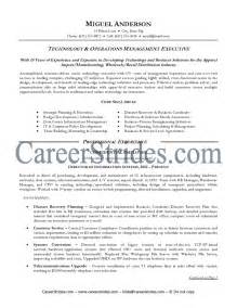 It Career Objective Examples Information Technology Information Technology Resume Getessay Biz