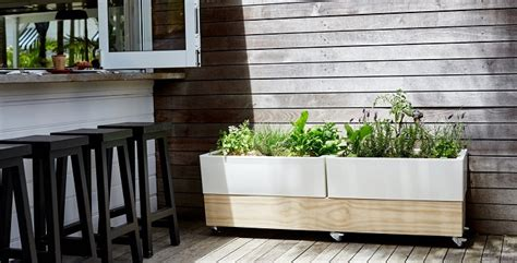 vegetable garden boxes growing your own food a major step to a healthier you