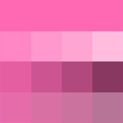 shades of pink hot pink shades hue pure color with tints hue