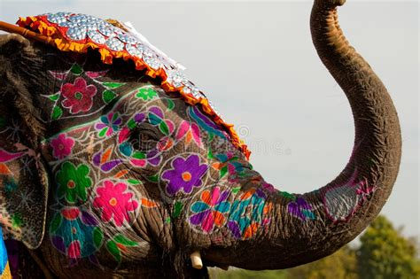 l 礬l礬phant se musique 201 l 233 phant admirablement peint en inde photo stock image