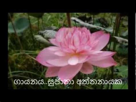 dunukeiya malak wage song dunukeiya malak wage created by nishantha perera youtube