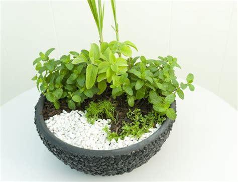 indoor container herb garden diy herb garden idea grow a herbal tea garden in a large