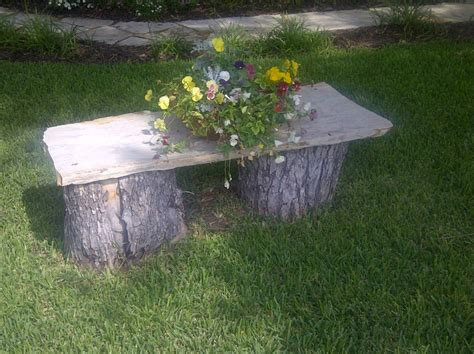 tree stump bench 222 best tree stumps limbs branches images on pinterest