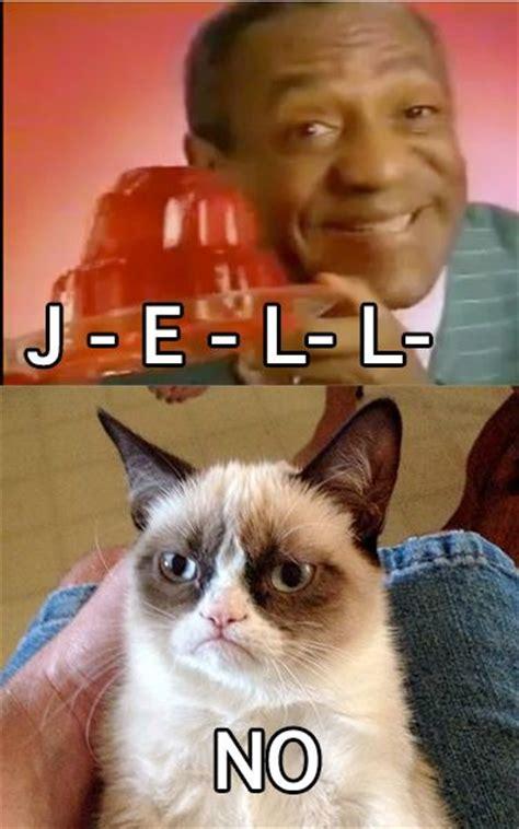 Grumpy Cat No Memes - oh no grumpy you can t mess with the cos grumpy hahaha