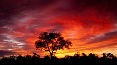 computer wallpaper size in pixels south africa savna sky with red cloud eclipse sunset