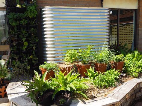 best edible plants for your vertical garden