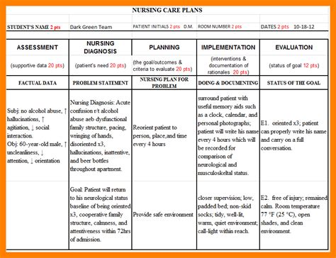 nursing home care plans exles 4 care plan exle protect letters