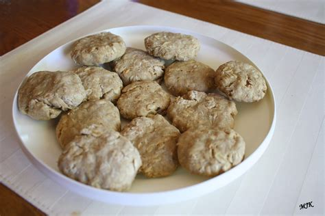 can dogs oatmeal s cuisine peanut butter and oatmeal biscuits