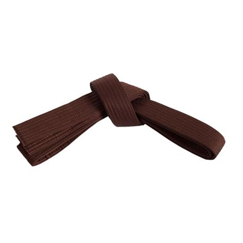 2nd brown belt test american academy of self defense