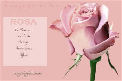 linguaggio fiori amicizia il linguaggio dei fiori