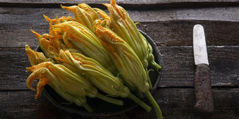 ricette con fiori di zucca e zucchine fiori di zucca ripieni di speck menatti e zucchine