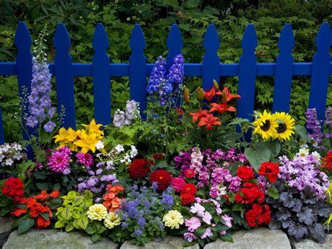 beautiful flower garden pictures   images
