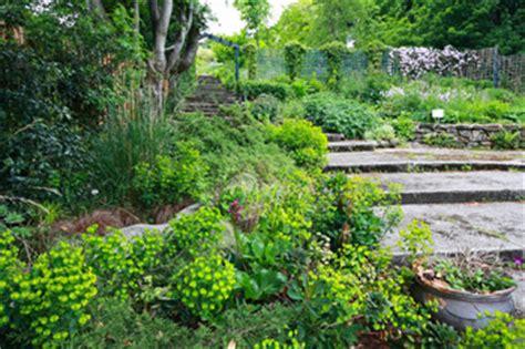 Backyard Biodiversity by Gardening For Biodiversity Organic Gardening