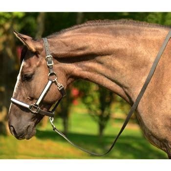 Horse Tack Giveaway - two horse tack