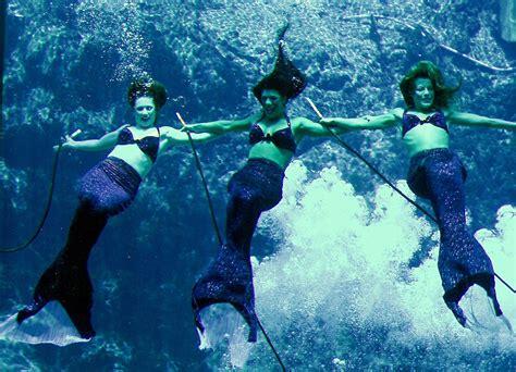 the mermaid s mermaids weeki wachee springs roadside wonders