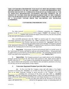Convertible Loan Agreement Template business form template gallery