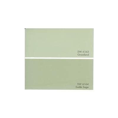 sw6164 svelte sage paint by sherwin williams possible