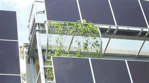 vertical green and solar panel