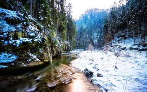 imagenes de invierno paisajes en invierno fotos espectaculares pinterest