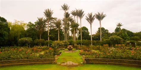 Observatory Botanical Gardens The Botanical Garden Floral Observatory
