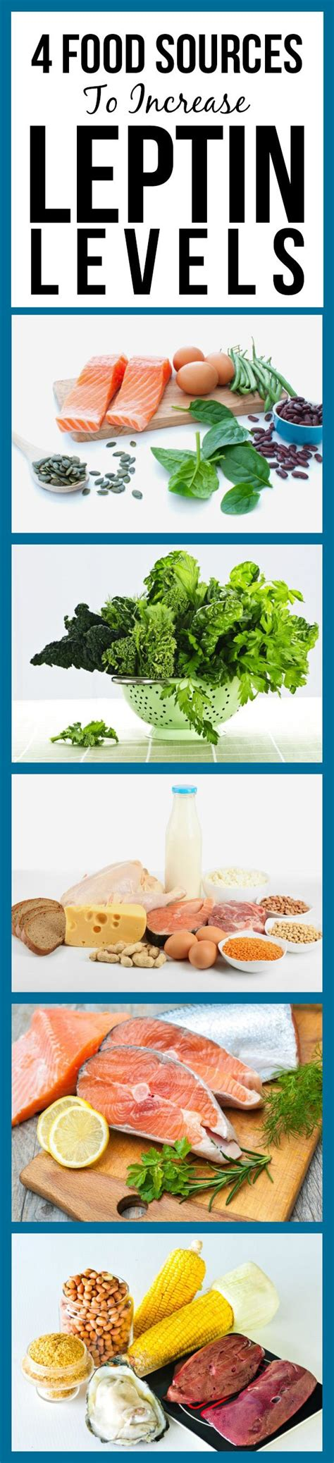 Hormone Diet Detox Food List by Best 25 Leptin Diet Ideas On