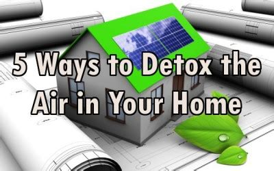 Best Way To Detox Thc In 2 Weeks by 5 Effective Ways To Detox The Air In Your Home