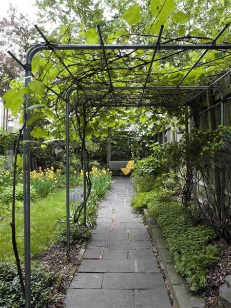 backyard grape trellis design grape vine trellis ideas houzz