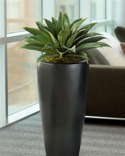lifelike broad leaf agave artificial succulent plant at petals
