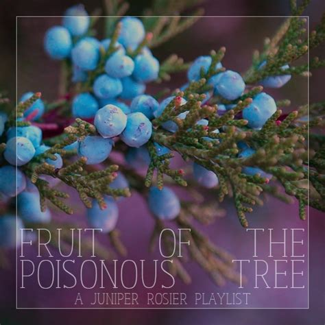 fruit of the poisonous tree 8tracks radio fruit of the poisonous tree 11 songs