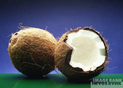 cara membuat minyak kelapa yang mudah produk minyak kelapa dara dan ebook dapatkan ebook