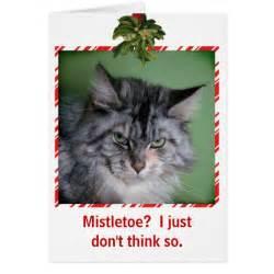 cat mistletoe greeting card zazzle