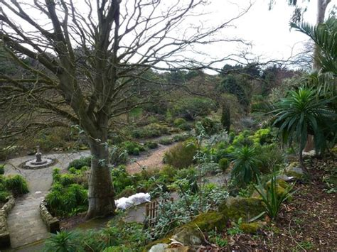 Very Interesting History Note About The Tunnel Picture Ventnor Botanic Garden