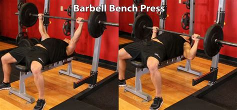 how many calories does bench press burn barbell bench press