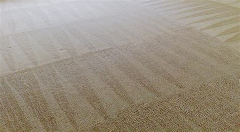rug cleaning tulsa 918 carpet cleaning broken arrow tulsa carpet cleaners