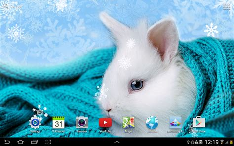 frozen dog wallpaper cute winter wallpaper android apps on google play
