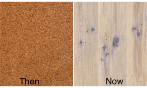top 28 cork flooring or bad cork flooring tiles kitchen keramogranit cork flooring yay