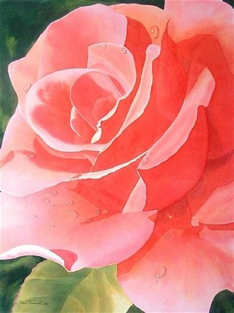 195 best images about painting on watercolors shabby chic pink and yellow roses