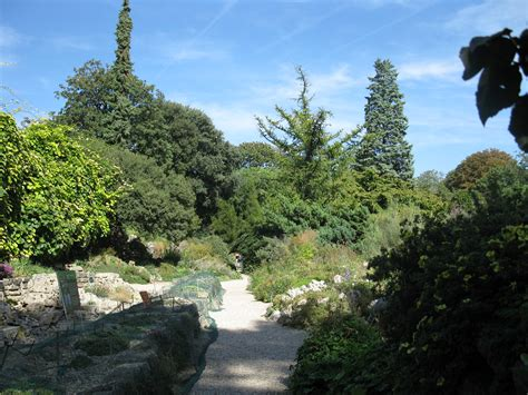 file jardin alpin jpg