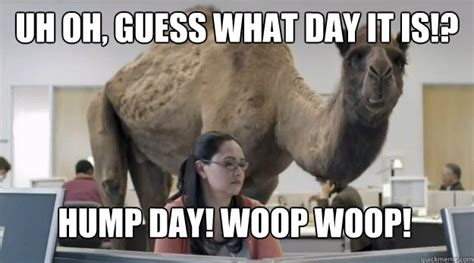 Happy Hump Day Memes - hump day meme