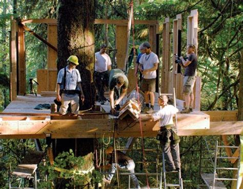 treehouse builder tree house pictures amazing treehouses