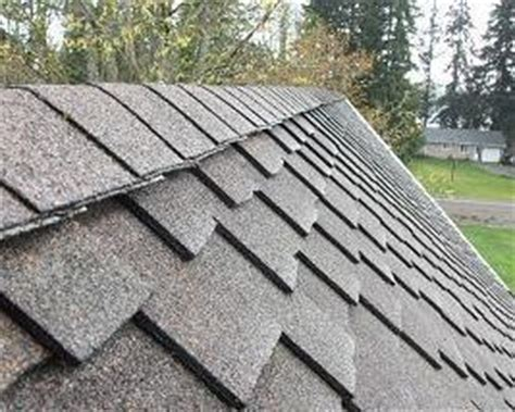 tile roof cleaning bonded and insured lake nona roof cleaning service and moss removal for stanwood wa