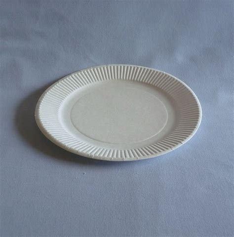What To Make With Paper Plates - 7 quot paper plate wb plates bowls biodegradable
