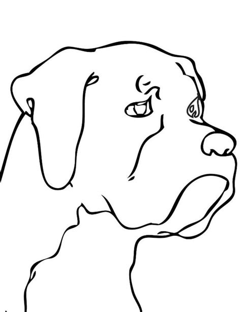 black and white coloring pages of dogs dog head coloring pages animal coloring pages of