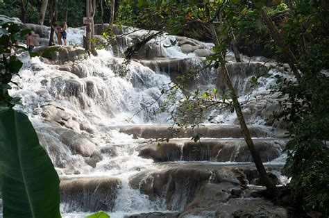 In Jamaica Top 20 Things To Do In Jamaica For Nature